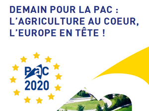 Formalites Adminstratives Et Cfe Chambres D Agriculture