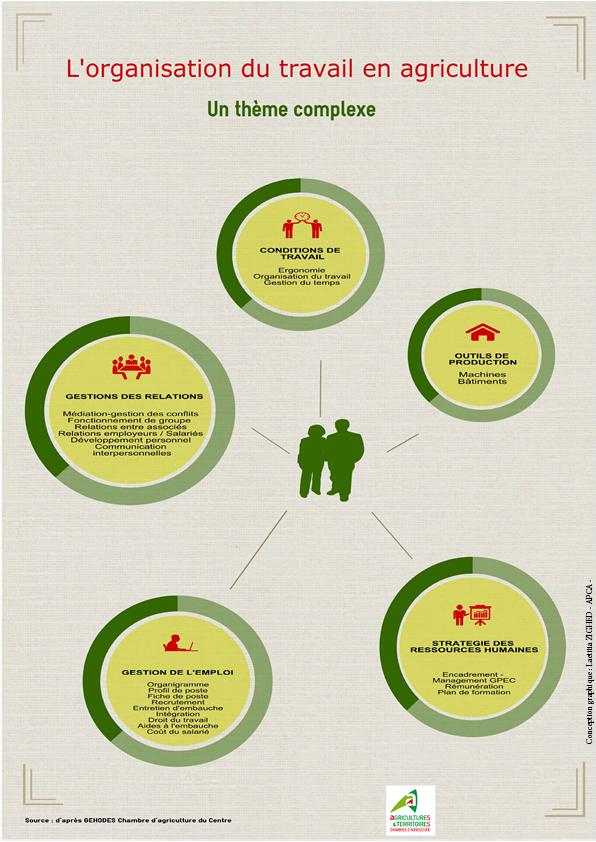 Infographie Tout savoir sur l'organisation du travail