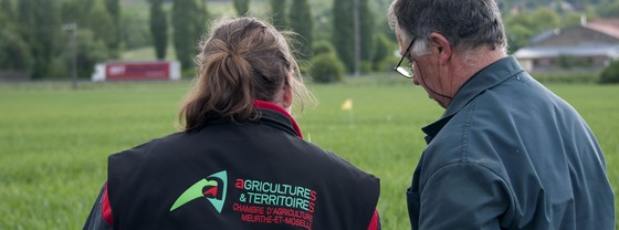 Recrutement chambres d 39 agriculture for Recrutement chambre agriculture