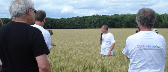 Dephy ecophyto chambres d 39 agriculture - Chambre d agriculture offre d emploi ...