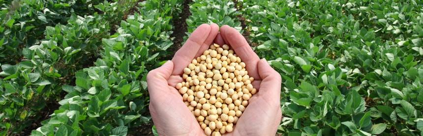 Groupement d 39 int r t scientifique gis chambres d 39 agriculture - Chambre d agriculture offre d emploi ...