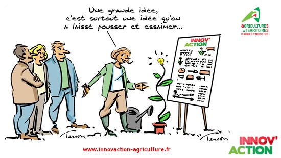 Partage d'idées et bonnes pratiques à Innov'Action